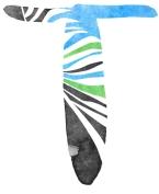 T Watercolour